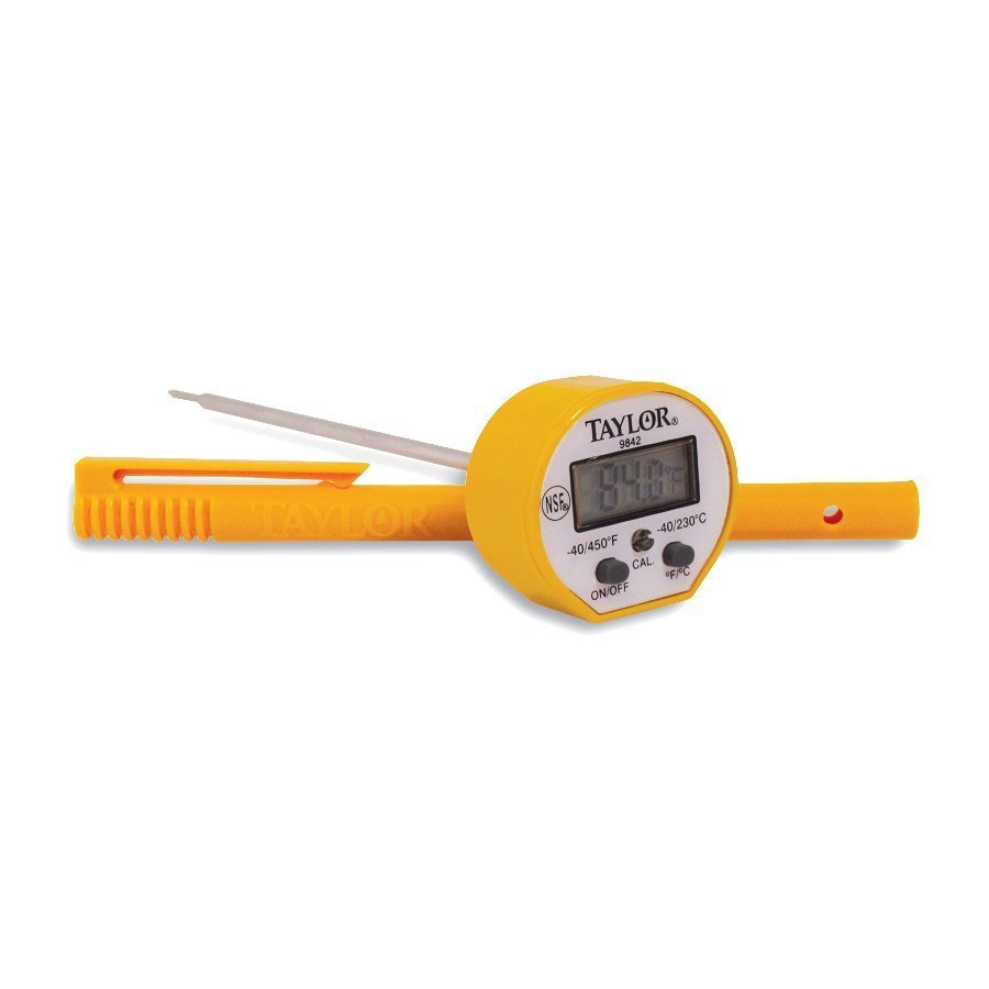 Analog and Digital Thermometers